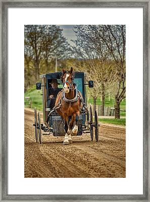 Horse And Buggy With Two Passengers Framed Print by Henry Kowalski