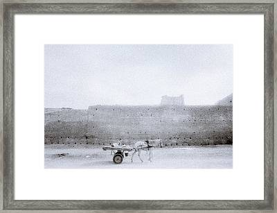 Horse And Cart Framed Print by Shaun Higson