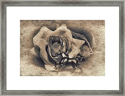 Horse And Rose Framed Print by Jeff  Gettis