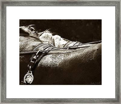 Horse Brass Framed Print by Judy Wood