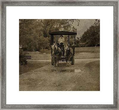 Horse Carriage Tour Framed Print by Dan Sproul