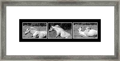 Horse Comes To Life Framed Print by Toppart Sweden