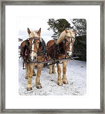 Horse Drawn Sleigh Framed Print by Edward Fielding