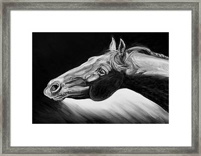 Horse Head Black And White Study Framed Print by Renee Forth-Fukumoto