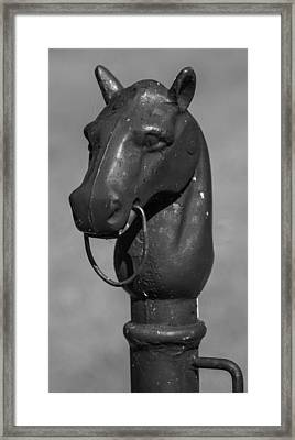 Horse Head Hitching Post Framed Print by Robert Hebert