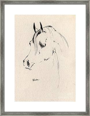 Horse Head Sketch Framed Print by Angel  Tarantella