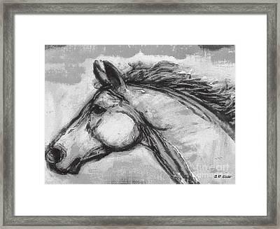 Horse Head Study Framed Print by Elizabeth Coats