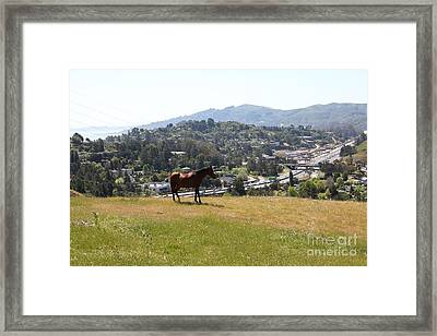 Horse Hill Mill Valley California 5d22662 Framed Print by Wingsdomain Art and Photography