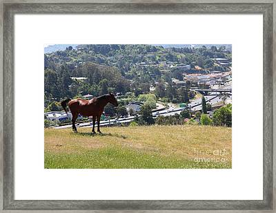 Horse Hill Mill Valley California 5d22663 Framed Print by Wingsdomain Art and Photography