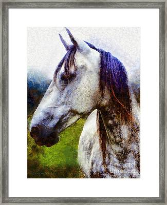 Horse I Dream Of You Framed Print by Janine Riley
