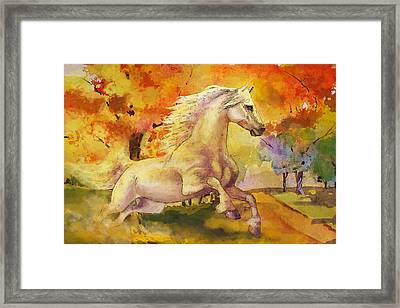 Horse Paintings 003 Framed Print by Catf