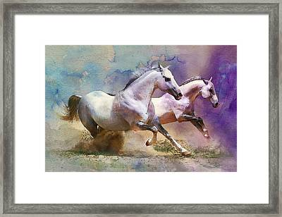 Horse Paintings 004 Framed Print by Catf