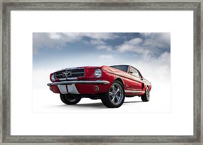 Just Horsin' Around Framed Print by Douglas Pittman