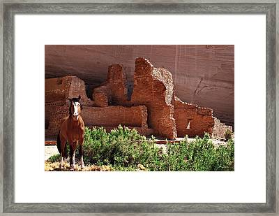 Horse Ruins In Canyon De Chelly Framed Print by Julie Magers Soulen