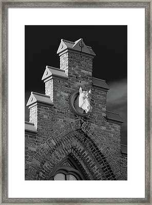Horsehead   8256 Framed Print by Guy Whiteley