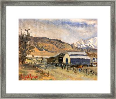 Horses And Bairs Framed Print by Jeff Brimley