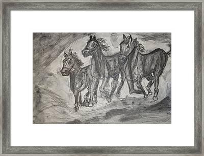 Horses Framed Print by Daniele Fedi