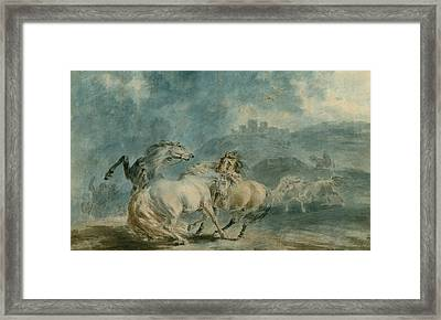 Horses Fighting Framed Print by Sawrey Gilpin