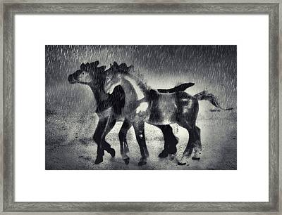 Horses In Twilight Framed Print by Jeff  Gettis