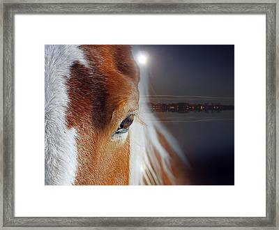 Horses  Framed Print by Mark Ashkenazi