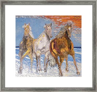 Horses On The Beach Framed Print by Vicky Tarcau
