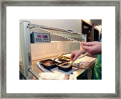 Hospital Food Temperature Test Framed Print by Public Health England