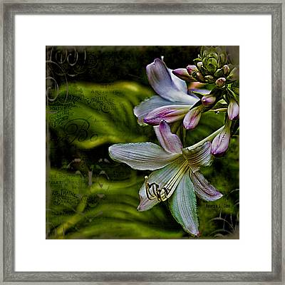 Hosta Lilies With Texture Framed Print by Bellesouth Studio