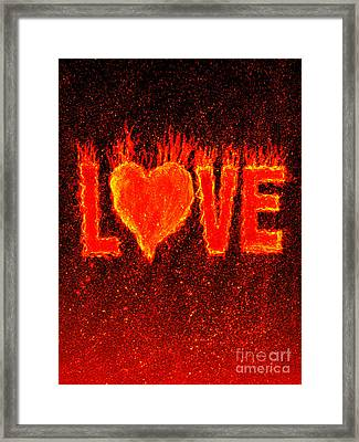 Hot Love  Framed Print by Bill Holkham