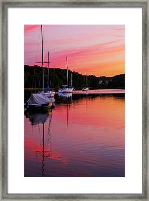 Hot Pink Canal Framed Print by Karol Livote