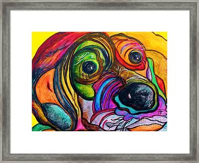 Hound Dog Framed Print by Eloise Schneider
