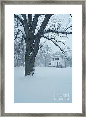 House And Big Tree In Snow Framed Print by Jill Battaglia