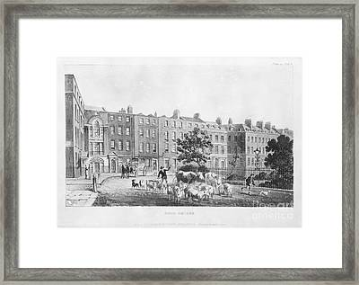 House Of Joseph Banks, 19th Century Framed Print by Natural History Museum, London