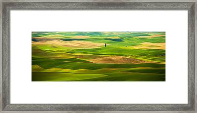 How Could I Be Alone Framed Print by Kunal Mehra