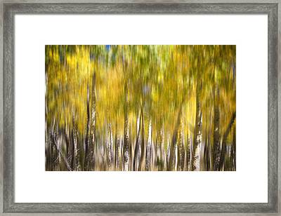 How Did I Get Here Framed Print by James BO  Insogna