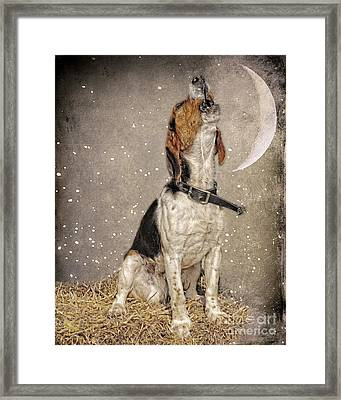 Howl At The Moon Framed Print by Jak of Arts Photography