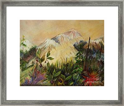 Huckleberry Mtn Framed Print by Mary Tevebaugh