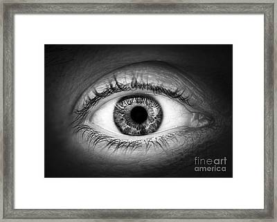 Human Eye Framed Print by Elena Elisseeva
