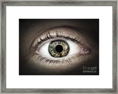 Human Eye Macro Framed Print by Elena Elisseeva