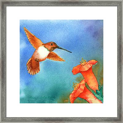 Hummer Framed Print by Tracy L Teeter