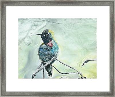 Humming Bird Framed Print by Donna Turbyfill