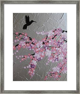 Humming Bird With Cherry Blossom Framed Print by Cathy Jacobs