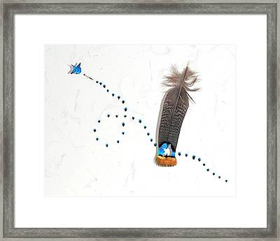 Hummingbird 4 Framed Print by Chris Maynard