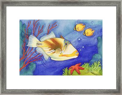 Humu Picasso Triggerfish Framed Print by Laura Nikiel