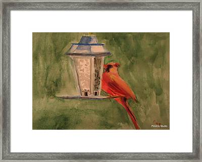 Hungry Red Framed Print by Betty Pimm