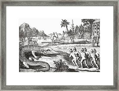 Hunting Alligators In The Southern States Of America Framed Print by Theodor de Bry