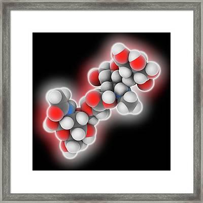 Hyaluronic Acid Polymer Framed Print by Laguna Design