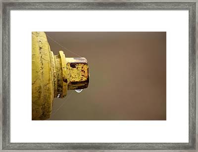 Hydrant Drip Framed Print by Karol Livote