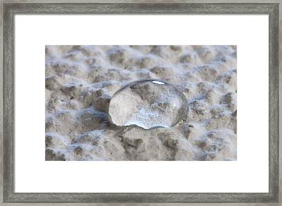 Hydrophobic Paint Framed Print by Science Photo Library