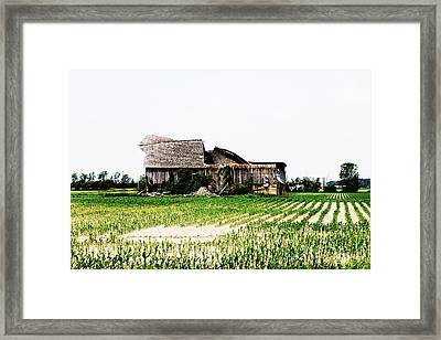 I Fall To Pieces Framed Print by Sheryl Burns