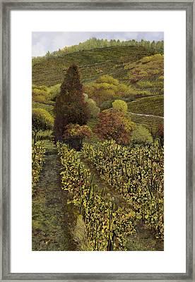 I Filari In Autunno Framed Print by Guido Borelli